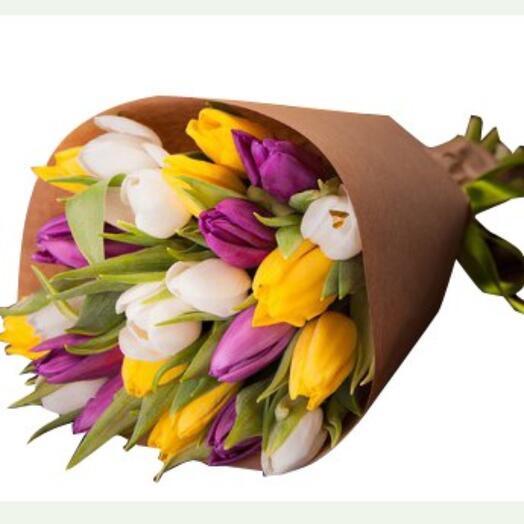 25 голландских тюльпанов