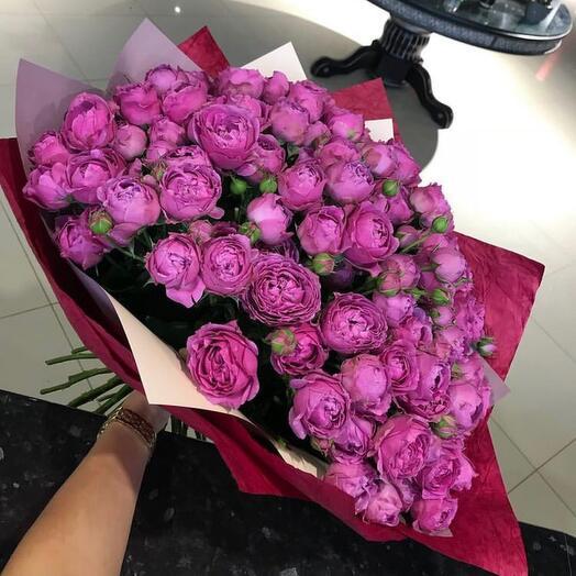 Пионо видная Роза