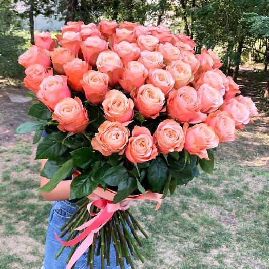 51 пионовидная роза Kahala