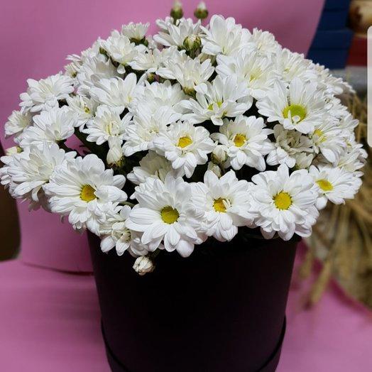 Шляпная коробочка с хризантемами: букеты цветов на заказ Flowwow
