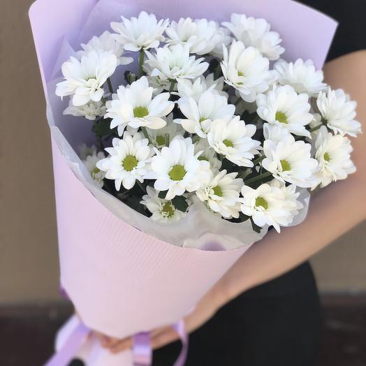 Доставка цветов одесса ромашки минск, заказать букет