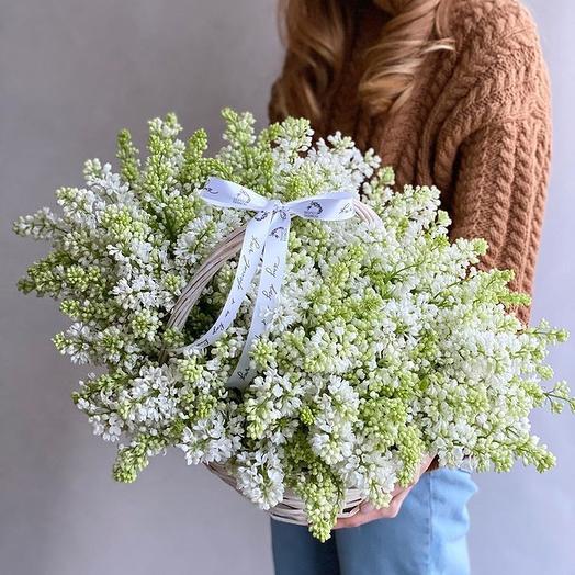 Корзина с сиренью: букеты цветов на заказ Flowwow