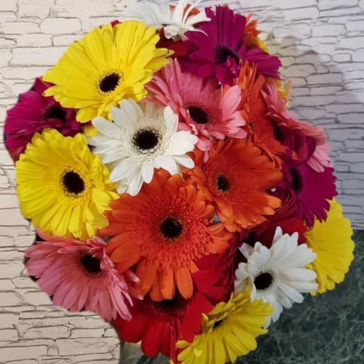 Рай ГЕРБЕР: букеты цветов на заказ Flowwow