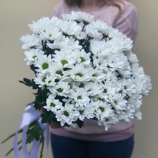 Хризантема Бакарди: букеты цветов на заказ Flowwow