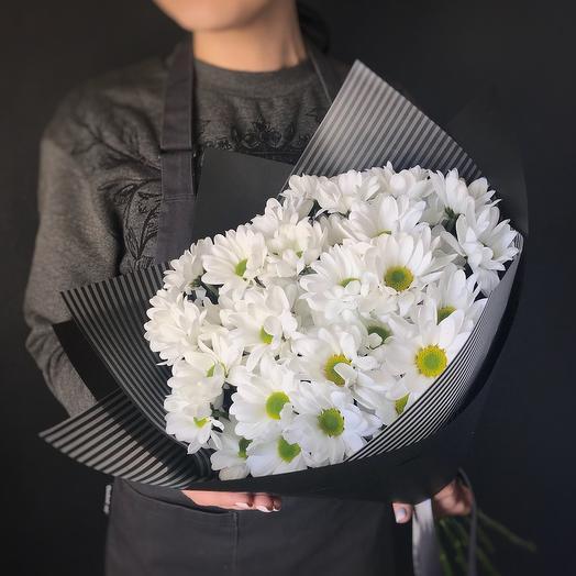 25 ромашковых хризантем