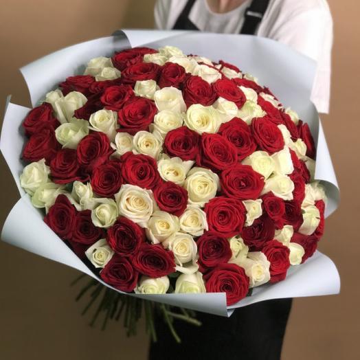 101 белая красная роза