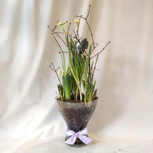 Подарок весны