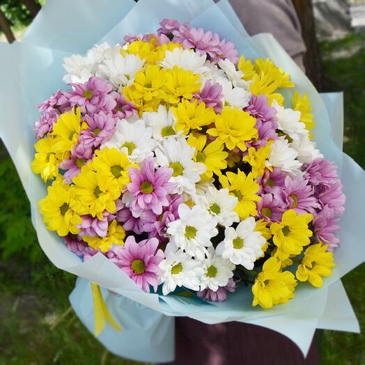 Букет из хризантем куставых микс