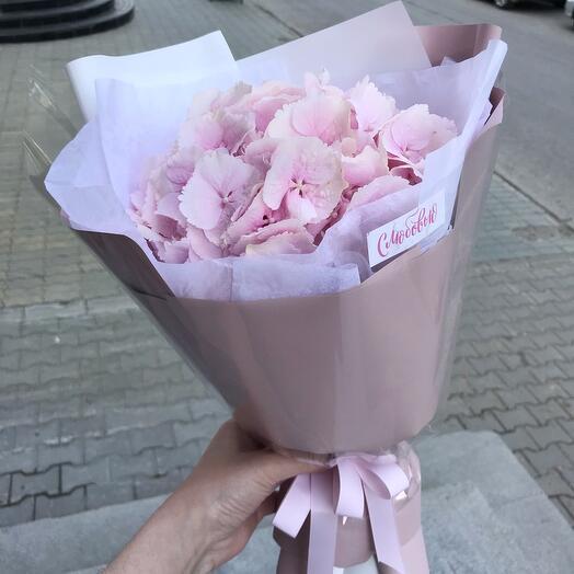 Гортензия розовая в оформлении