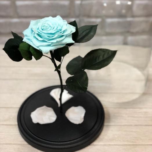 Тиффани Роза в Колбе KING: букеты цветов на заказ Flowwow