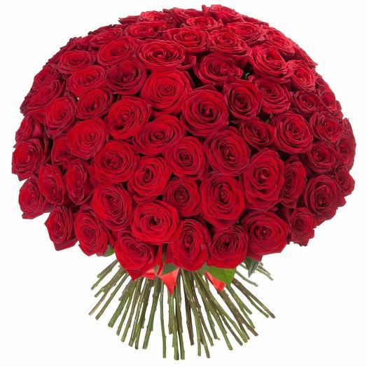 101 roses 50 cm