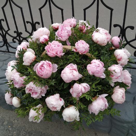 Ароматная корзина из 51 пиона Сара Бернар: букеты цветов на заказ Flowwow