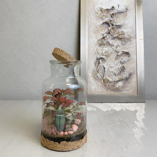 Бутылочный сад: букеты цветов на заказ Flowwow