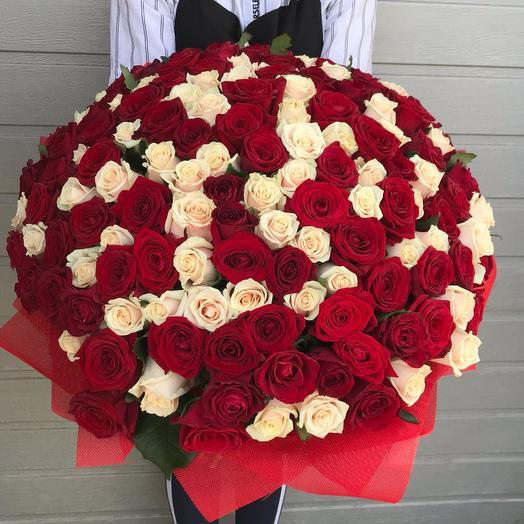 """151 роза """"Яркие чувства"""""""