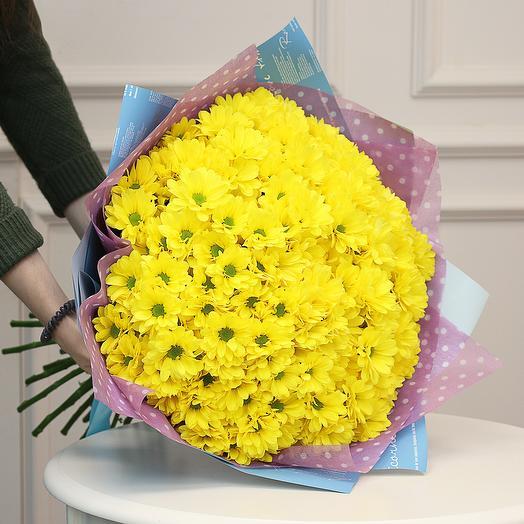 Букет из 25 жёлтых кустовых хризантем Бакарди