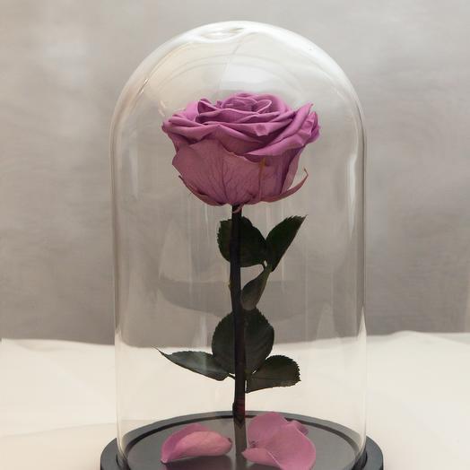 Роза в колбе RozaRose Медиум Сиреневая