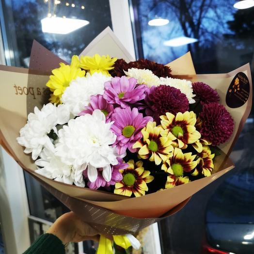 Радужные хризантемы