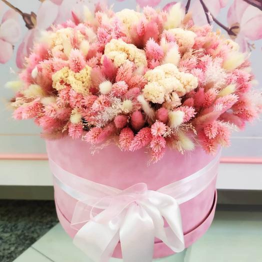 Сухоцветы в розовом цвете