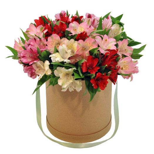 15 альстромерий в коробке: букеты цветов на заказ Flowwow