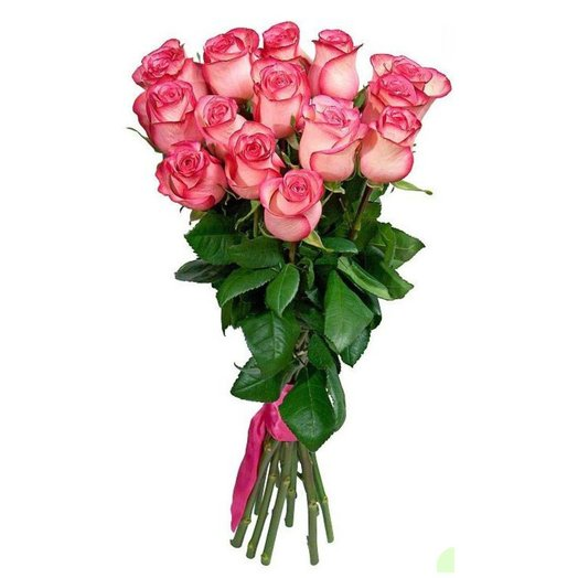 15 элитных высоких розовых голландских роз: букеты цветов на заказ Flowwow