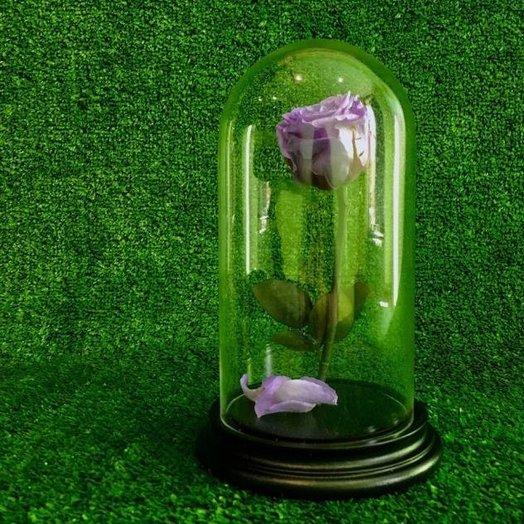 Долговечная роза в колбе Лила: букеты цветов на заказ Flowwow