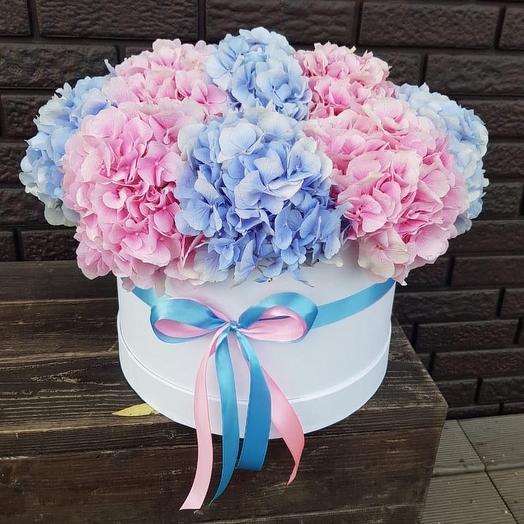 Гортензии в коробке: букеты цветов на заказ Flowwow