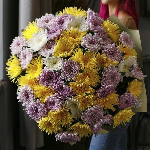 """Букет из """"51 одноголовой хризантемы микс"""": букеты цветов на заказ Flowwow"""