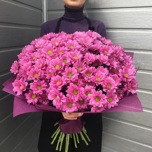 """25 Хризантем """"Яркое Солнце"""": букеты цветов на заказ Flowwow"""