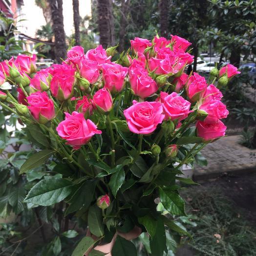 Букет из розовых кустовых роз: букеты цветов на заказ Flowwow