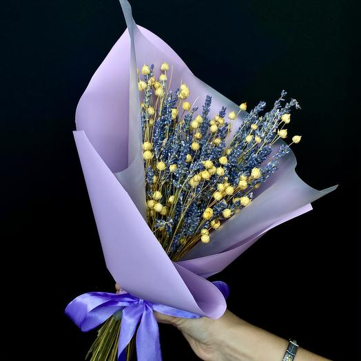Lavender Hello