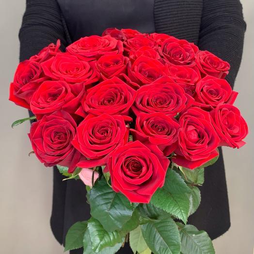 25 красная роза  40  см