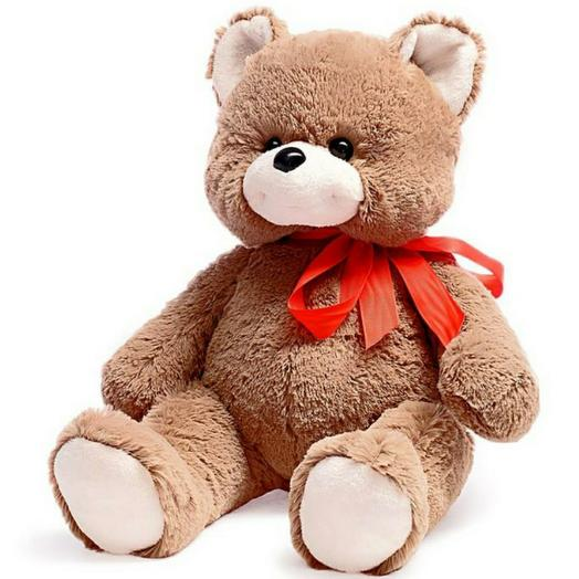 Медведь Сашка 50 см