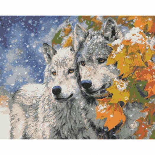 Картина по номерам Пара волков