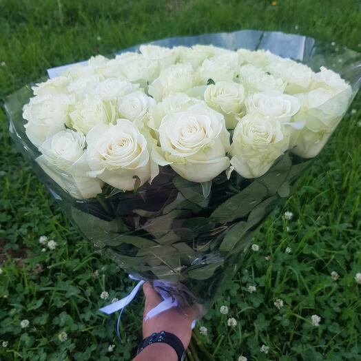Белая роза 51