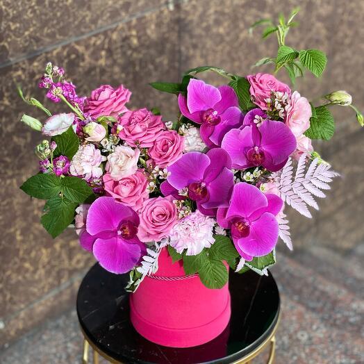 Стильная композиция с орхидеей
