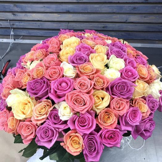 101 роза «Pink Dreams»: букеты цветов на заказ Flowwow