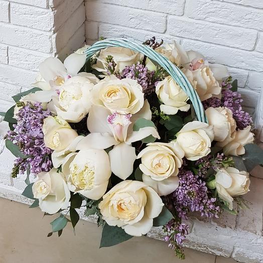 Эльфито: букеты цветов на заказ Flowwow