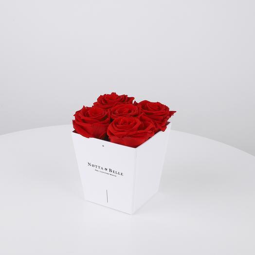 Долговечный букет из 5 роз ( красный): букеты цветов на заказ Flowwow