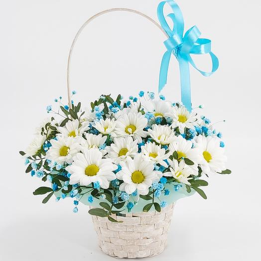 Basket with daisies and baby's breath