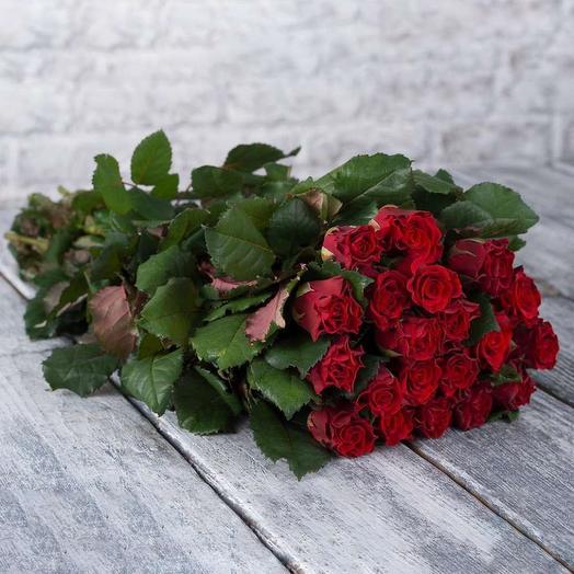 Роза Эль Торо 60 см 19 шт