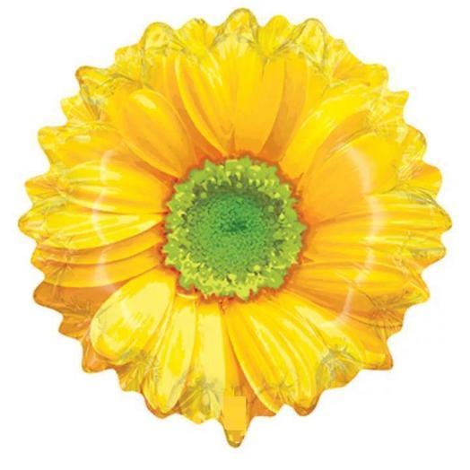 Шар «Цветок» с гелием 25