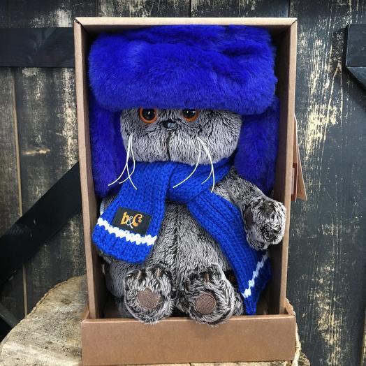 Кот Басик в меховой шапке