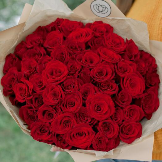 Букет из 51 красной с темной каймой розы (Россия) 40 см