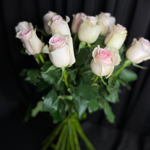 Роза свит ревиваль