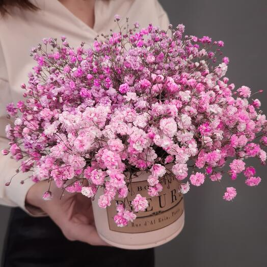 Pink gypsophila in vintage planters