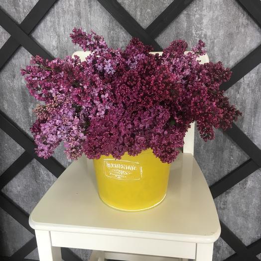 Сиреневое солнце: букеты цветов на заказ Flowwow