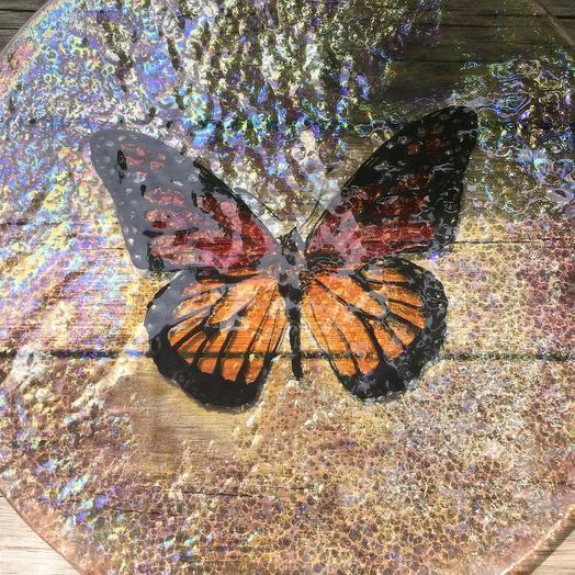 Бабочка тарелка