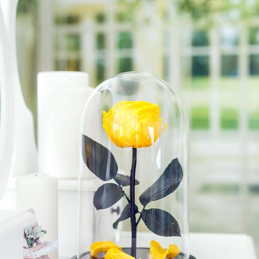 Роза в колбе «Premium» жёлтая