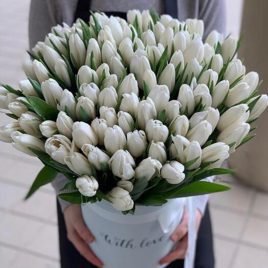 101 белых тюльпанов
