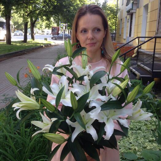 Лилия белая 5 шт